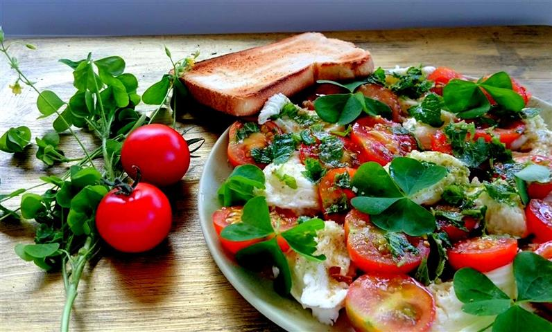 tomatensalat mit sauerklee hannas t chter. Black Bedroom Furniture Sets. Home Design Ideas
