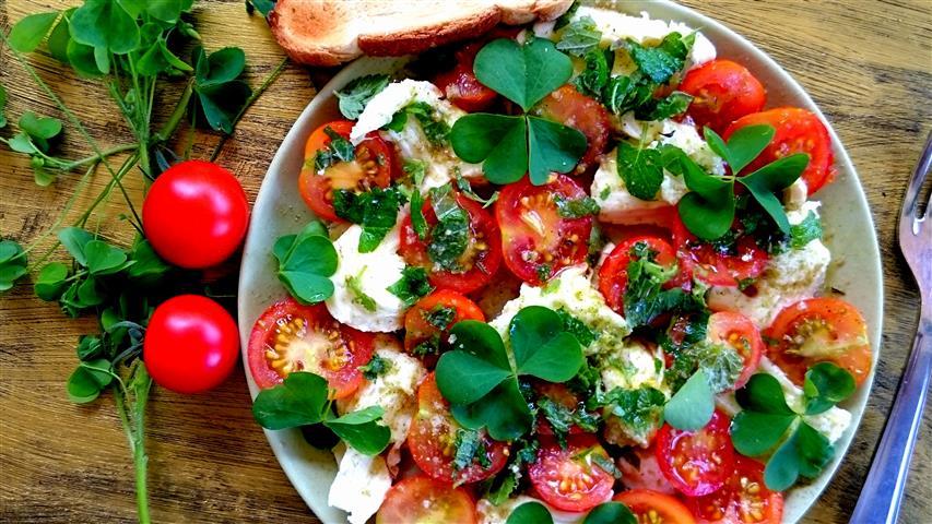 Tomatensalat mit Sauerklee