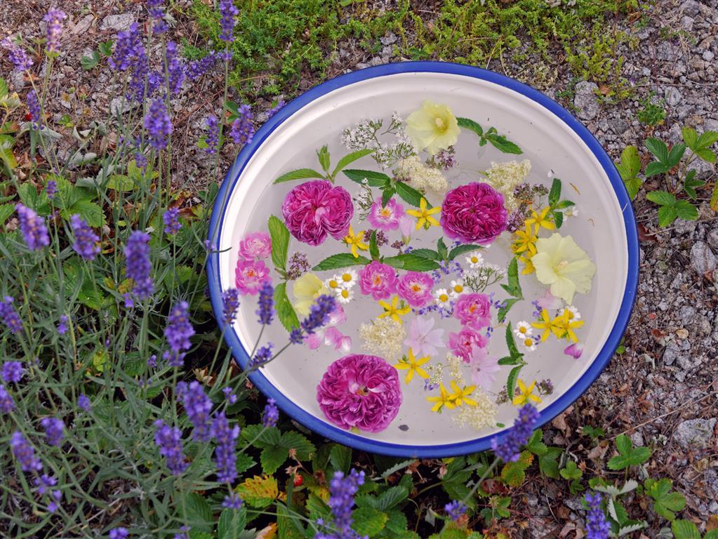 Fußbad mit Blüten und Kräutern