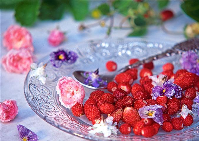 Blüten kandieren